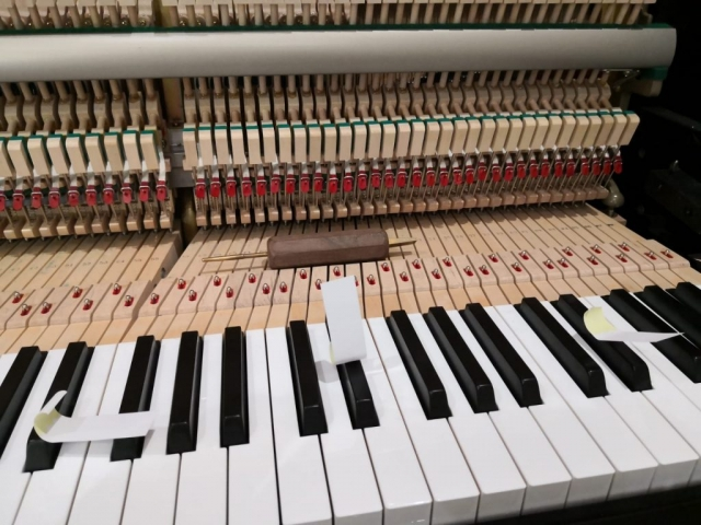 Sydney Piano Tuner and Repair Key Easing