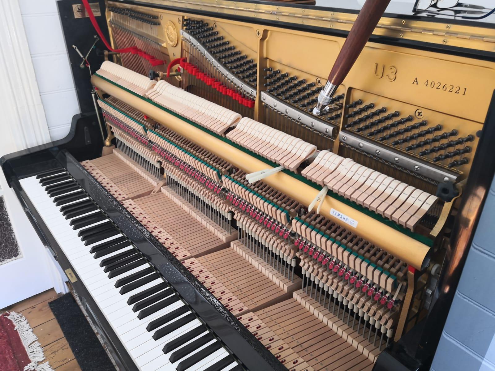 Sydney Piano Tuner